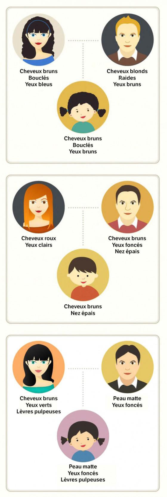 Génétique Famille 1